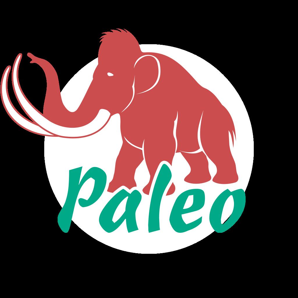 Paleo konyha receptkönyv